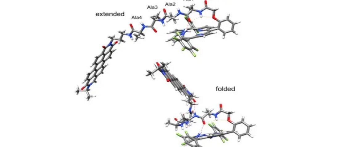 Picosecond Electron Transfer in Peptides Can Help Energy Transfer and Storage Technologies