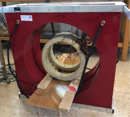 Static Magnetic Field test
